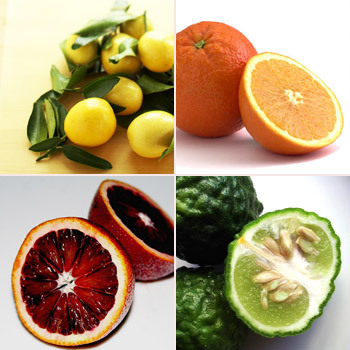 диеты без вреда как похудеть
